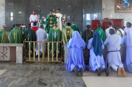 Madonna Agulu, Celebrates New Priest, Silver Jubilee and Professed Revd. Sisters
