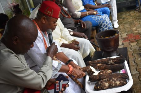 New Yam: Akpu Community Marks 'Otute', New Yam Festival in a Phenomenal way